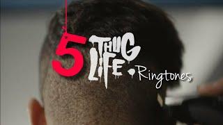 Video TOP 5 THUG LIFE RINGTONES + DOWNLOAD LINK 🔥 download MP3, 3GP, MP4, WEBM, AVI, FLV Juli 2018