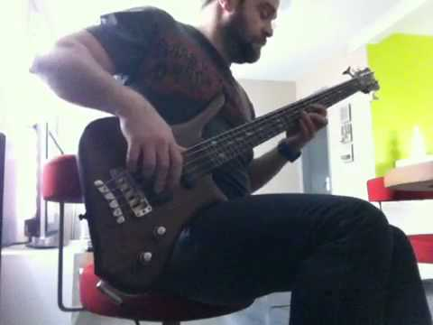 Mellowship in B major bass Cover