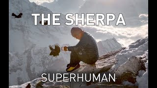 Real life X-men: Biology of the world's greatest climbers - the Sherpa