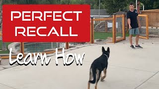 Do you want your dog to come to you?  Learn how to get a 100% recall