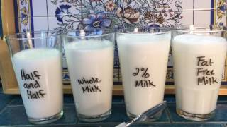 How To Steam Popular Milk And Milk Alternatives For Latte Quality Micro Foam