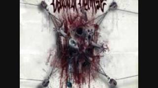Dawn of Demise - Awaken the Aggresor