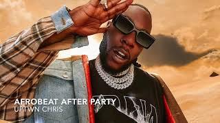 Afrobeat After Party Mix - Burna Boy, Wizkid, Mr Eazi, Rema, Davido, Tekno, Afro B, Maleek Berry
