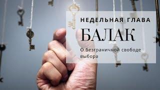 О безграничной свободе выбора   Урок от директора портала Ваикра р. Яакова Шатагина