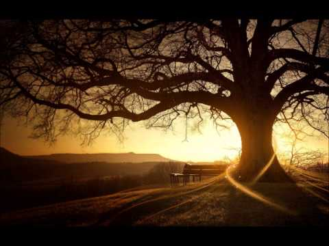 Van Morrison - Into The Mystic Lyrics