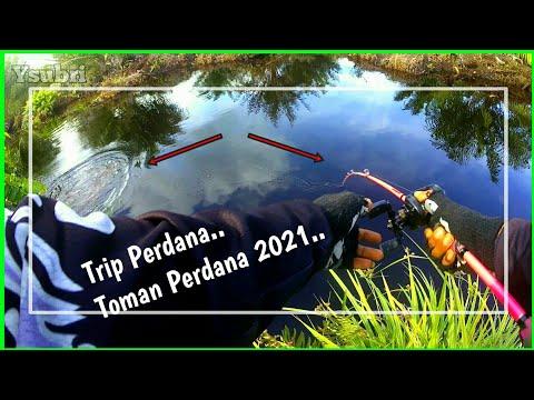 Toman Perdana 2021 - Casting Toman Kalimantan Tengah