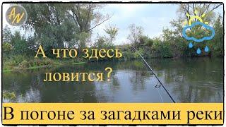Рыбалка на малой реке осенью Щука голавль Время контрастов