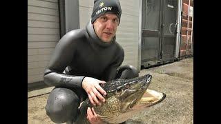 20191224 Подводная охота в Латвии на зимних щук
