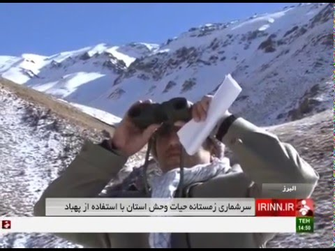 Iran Alborz, Wildlife census using Multi-Rotor سرشماري پهپادي حيوانات وحشي البرز ايران