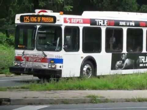 Southeastern Pennsylvania Transportation Authority Bus System (August 2009)