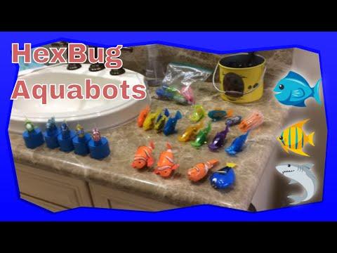 My Hexbug AquaBot And Zuru RoboFish Collection