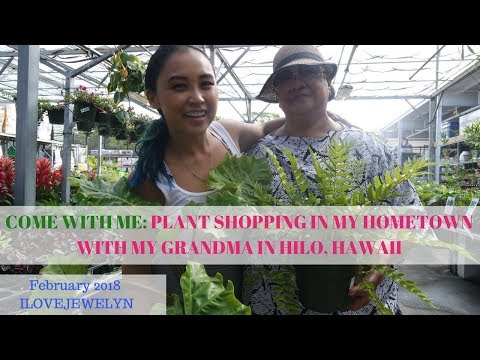 Come with me: Plant shopping with my grandma in Hawaii | February 2018 | ILOVEJEWELYN
