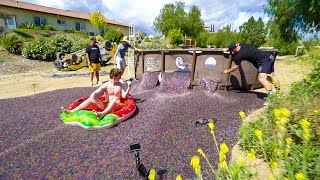 Download Dumping 25 Million Water Beads In My Backyard Mp3 and Videos