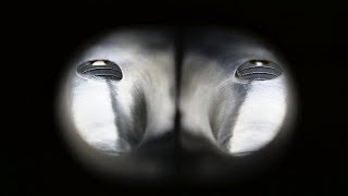 How to Port aฑd Polish Your Cylinder Head