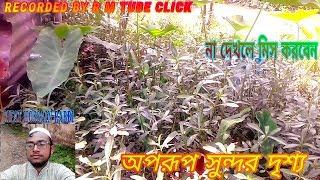 Amader Barir Daron Video 2   আমাদের বাড়ির বিডিও   R M Tube Click