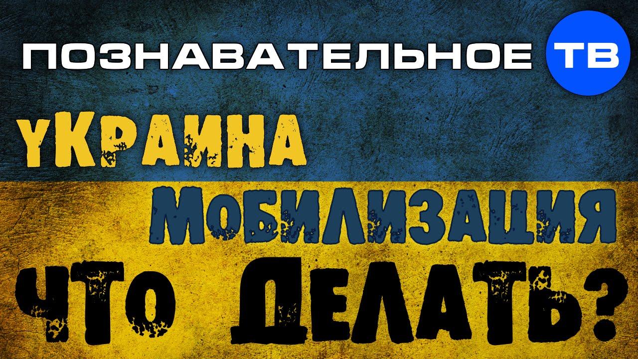 Картинки по запросу Украина. Мобилизация. Что делать? (Познавательное ТВ, Николай Стариков)