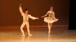 Recibe el Gota de Plata a la Compañía Nacional de Danza