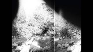 Godspeed You! Black Emperor - Asunder  Sweet and Other Distress [full album]