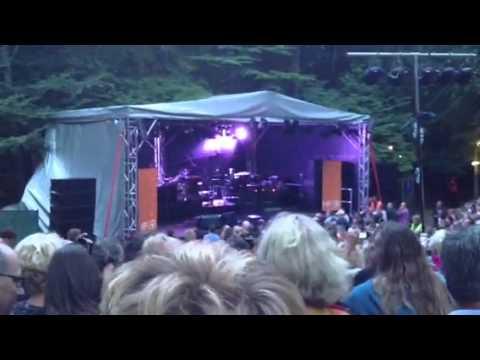 Stranglers Holt Festival