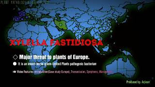 Xylella fastidiosa | Threat to Europe Plants | Introduction | Symptoms | Management