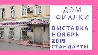Выставка в Доме Фиалки Ноябрь 2019 Стандарты