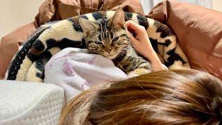 いつも早起きなのに寒くて布団から出られず朝寝坊してしまった子猫w