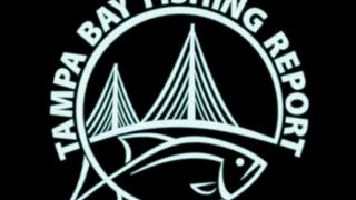 Tampa Bay Fishing Report Trout fishing in Boca Ciega Bay