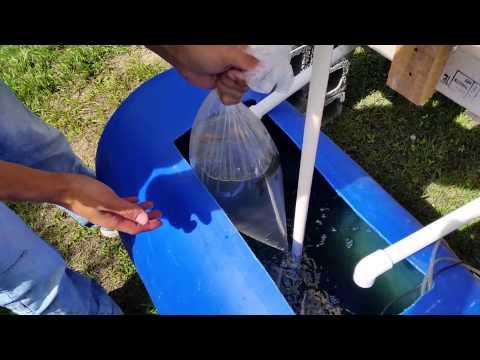 Curso a Distância Hidroponia - Solução Nutritiva de YouTube · Duração:  2 minutos 28 segundos