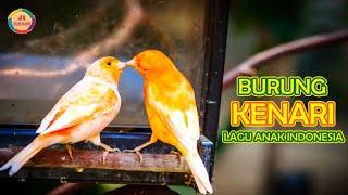 Burung Kenari Lagu Anak Indonesia