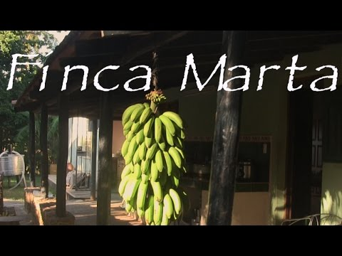 Best Organic Farm in Cuba - Finca Marta Video (HD)