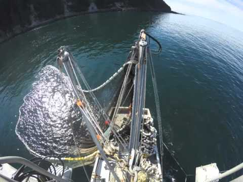 Purse Seining In Prince William Sound / Gulf Of Alaska Abord Mine Too