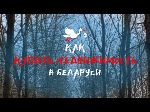 Как купить недвижимость в Беларуси   Поиск, просмотр и оформление документов