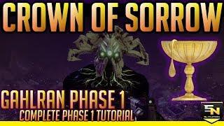 Destiny 2 | Crown of Sorrow Raid Guide- Ghalran Phase 1