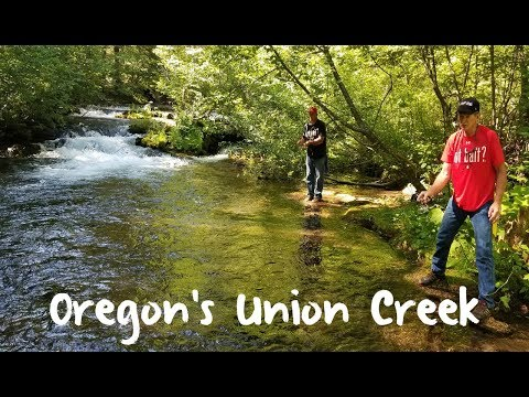 Trout Fishing Oregon's Union Creek