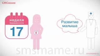 видео 17 неделя беременности