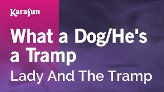 Karaoke What A Dog / He