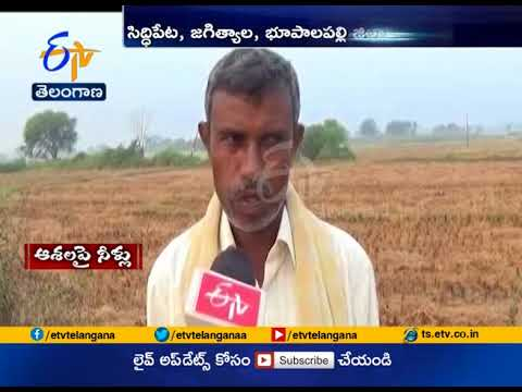 Crops damaged in heavy rains Across The state