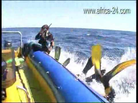 Barra Reef Dive Resort Mozambique - Africa Travel Channel