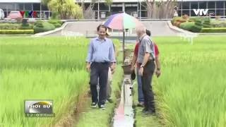 IRRI Supports Vietnam's Rice Cultivation