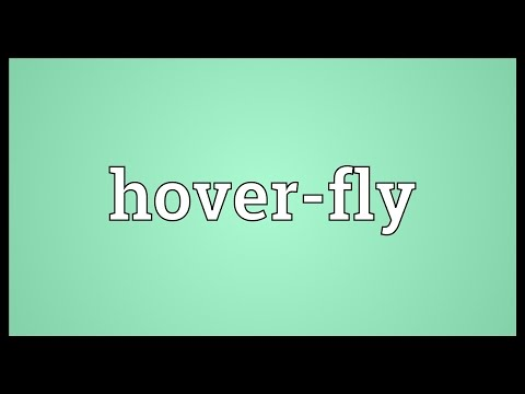 Hover-fly Meaning