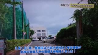 豊橋市立小沢小学校 女神のほほえみ田植え体験