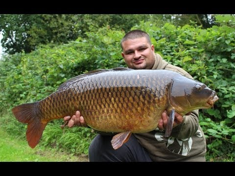 Carp fishing Farlows lake ( Day Ticket Diaries part 3 )