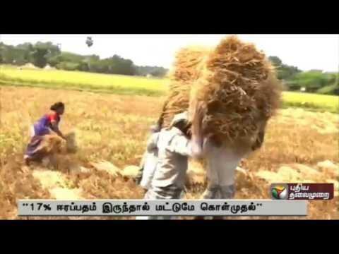 Exclusive: Paddy Farmer Have Problem In Procurement