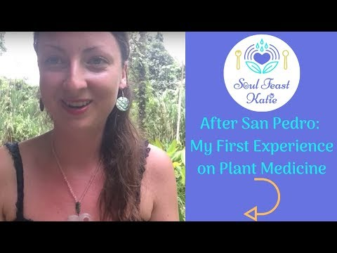 After San Pedro: My First Experience on this Plant Medicine