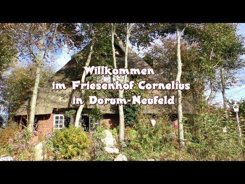 Zu Besuch Im Friesenhof Cornelius In Dorum Neufeld