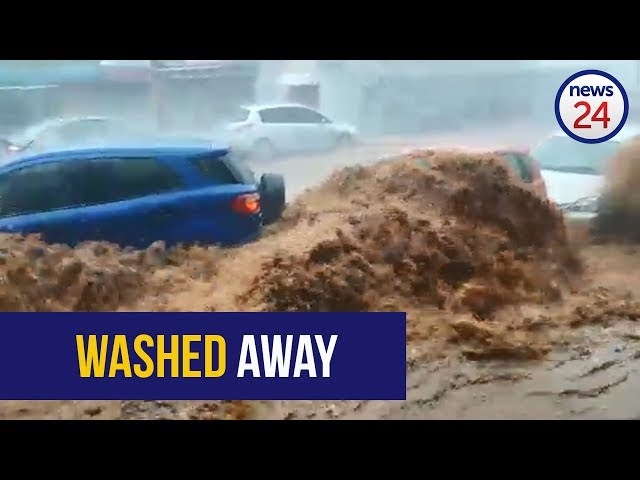 WATCH: Torrents, submerged cars and uprooted trees as storm batters Durban