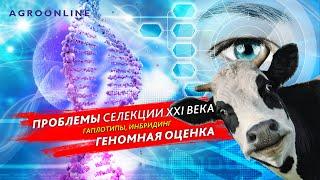 Проблемы селекции XXI века (гаплотипы, инбридинг). Геномная оценка. #всечтонужнофермеру