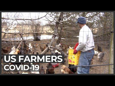 US farmers at risk of coronavirus
