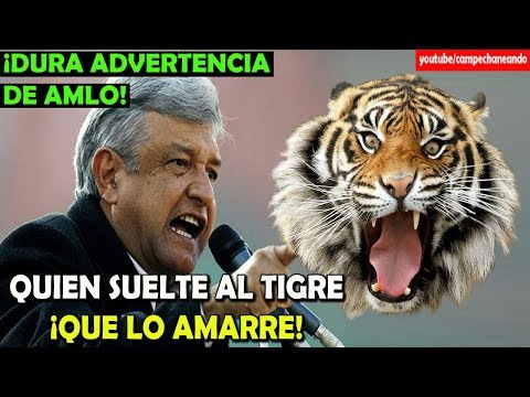 Si sueltan al tigre ¡Que lo Amarren! López Obrador - Campechaneando