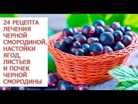Целебные свойства черной смородины 24 рецепта лечения черной смородиной,  настойки  ягод, листьев и